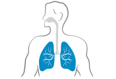Lungs inflammation